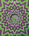 Psychedelic Sex, Cover, grün, lila, Hanson, Godtland