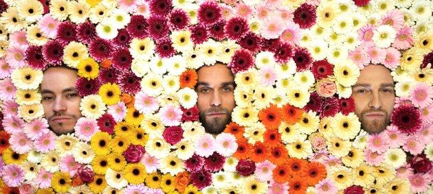 Blumen, Gesichter, Ok Kid, Stefan Braunbarth